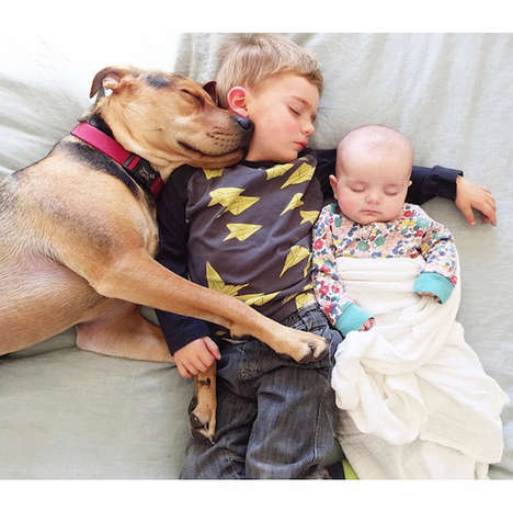Napping Photo Series - Jessica Shyba Captures Her Children and Dog in Adorable Repose