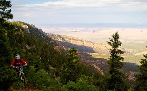 Scenic Mountain Biking Tours