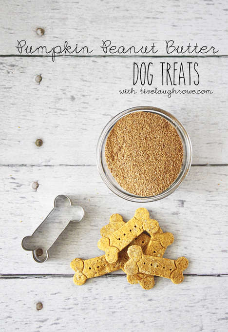 Pumpkin Doggie Snacks