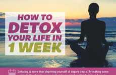 Life-Detoxifying Guides - This Infographic Suggests a One Week Detox Plan to Better Your Life