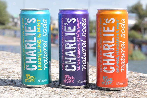 16 Examples of Healthy Carbonated Beverages