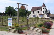 Altruistic Urban Vineyard - Chateau Hough in Cleveland aims to Revive a Neighborhood