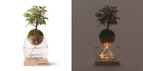 Mossy Plant Lights