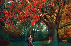Enchanting Woodland Editorials