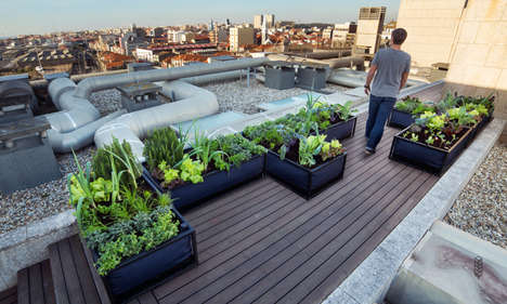 Urban Vegetable Gardens - The Noocity Growbeds Allow Consumers to Easily Grow Their Own Food