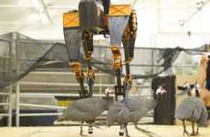 Kickable Bipedal Robots - The ATRIAS Robot Doesn't Mind If You Kick It