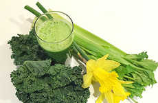 Simple Green Juice Recipes - This Spring Countdown Drink Gets Your Body into Great Shape for Summer