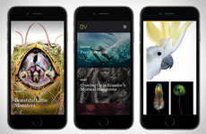 Travel Photography Apps - Nat Geo View Offers Editor-Chosen Images and Stories