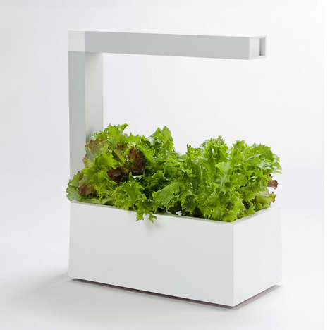 Modern Planting Pods - Herbie is an Indoor Garden Accessory for the Urban Farmer