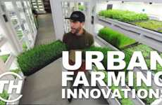 Urban Farming Innovations