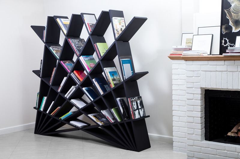 Fantastic Fan-Like Bookcases