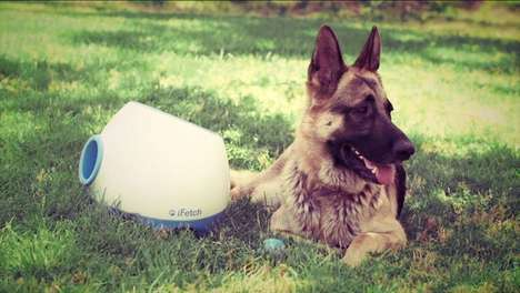 Fetch-Playing Gadgets