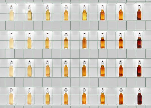 14 Educational Alcohol Experiences