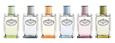 Genderless Fragrance Collections