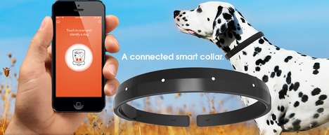 Smart Dog Collars - The 'Connected Collar' is the World's First All-In-One Smart Dog Collar