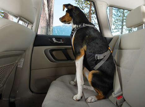 Canine Car Harnesses