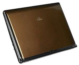 Stylish Asus Eee PC S101