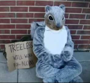 Giant Plush Activists - The 'Treeless Squirrel' Fights for the Environment