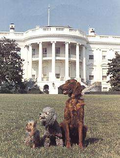 Obama Promises Children A Puppy