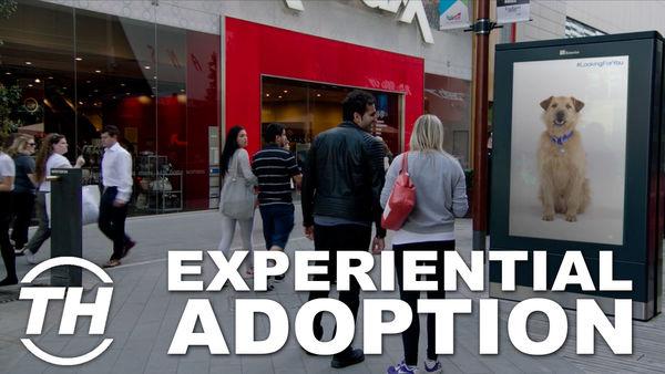 Experiential Adoption