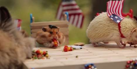 Patriotic Hamster Parties - This Fourth of July Barbecue is Complete with Mini Burgers & Fireworks