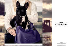 Celebrity Pet Campaigns - Lady Gaga's Pet Dog Miss Asia Kinney is the New Face of Coach
