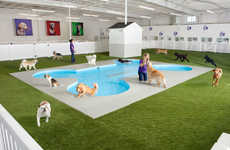 Pet-Friendly Airport Terminals