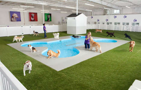 Pet-Friendly Airport Terminals - New York's John F. Kennedy Airport is Adding a Luxury ARK Terminal