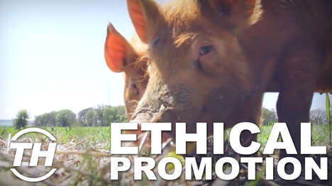 Ethical Promotion