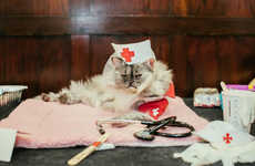 Feline Fashion Shows - The Annual Algonquin Cat Fashion Show Showcased Posh Pets
