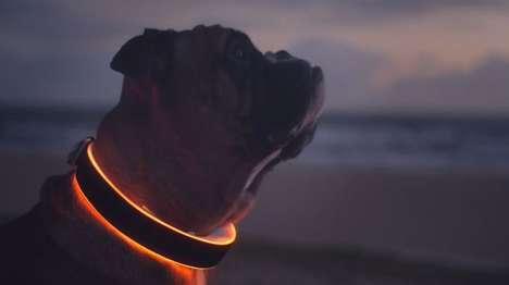 LED Smart Dog Collars
