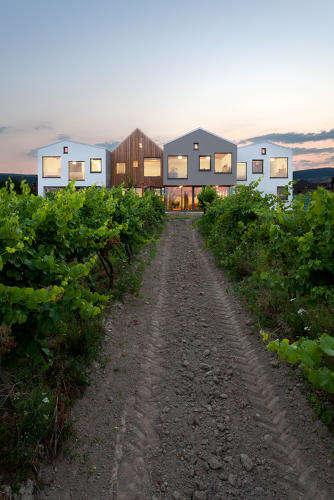 Winery Kindergarten Spaces
