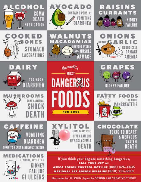 Dog Diet Safety Guides