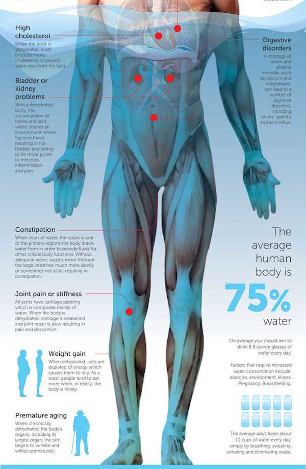 Harmful Hydration Charts Dehydration Effects