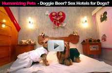 Doggie Beer? Love Hotels for Dogs? (HD Launch)