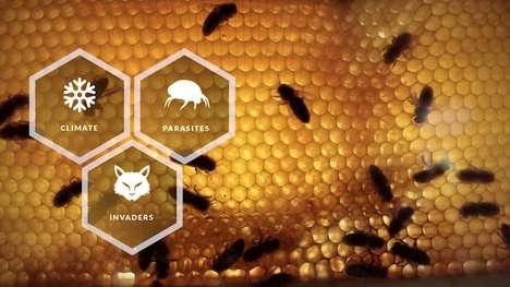 Smart Beehive Apps
