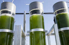 All-Natural Algae Biofuels