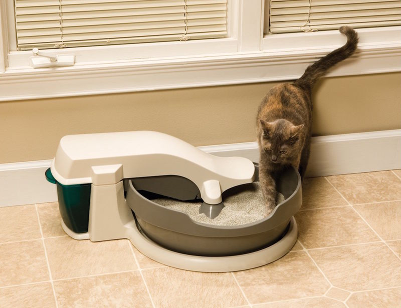 Self-Cleaning Litter Boxes