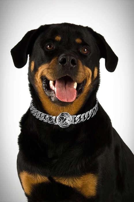 Chic Metal Dog Collars