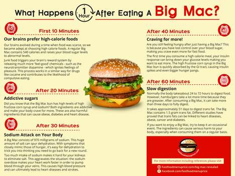 Digestive Burger Infographics