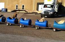 Rescue Dog Trains - This Man Takes in Stray Dogs and Gives Them a Ride Around in His Mini Train
