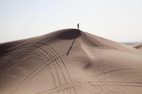Desert Struggle Photography