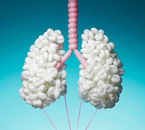 Anatomical Balloon Sculptures