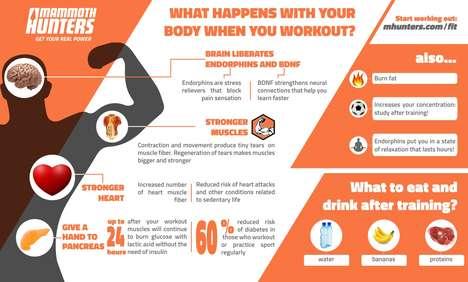 Explanatory Exercise Infographics