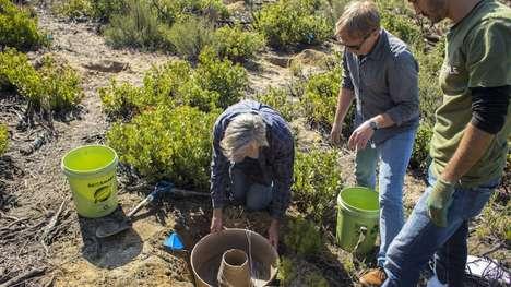 Arid Climate Planters