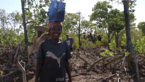 Viral Tree-Planting Initiatives