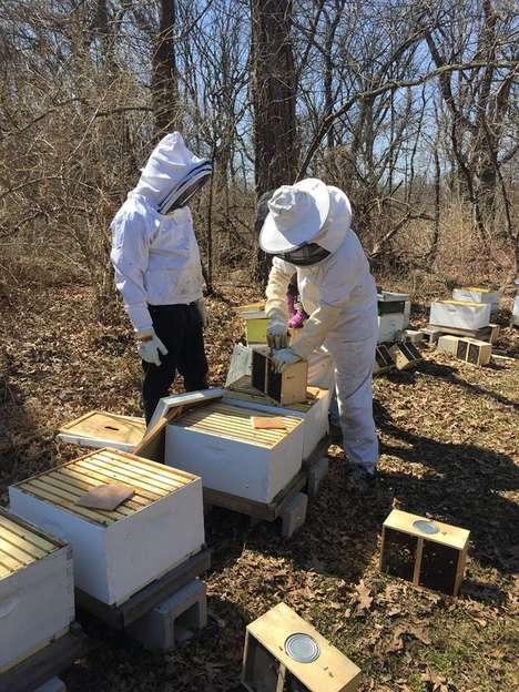 Ex-Offender Beekeeping Programs