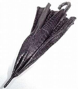 $50,000 Crocodile Umbrellas