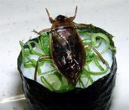 47 Unusual Japanese Foods