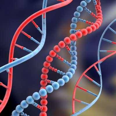 28 DNA Innovations